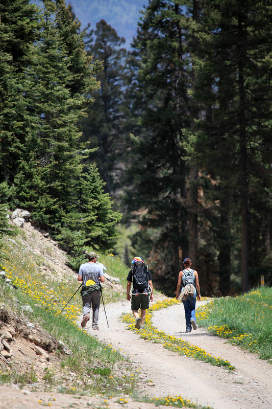 Photo of hikers in Los Alamos