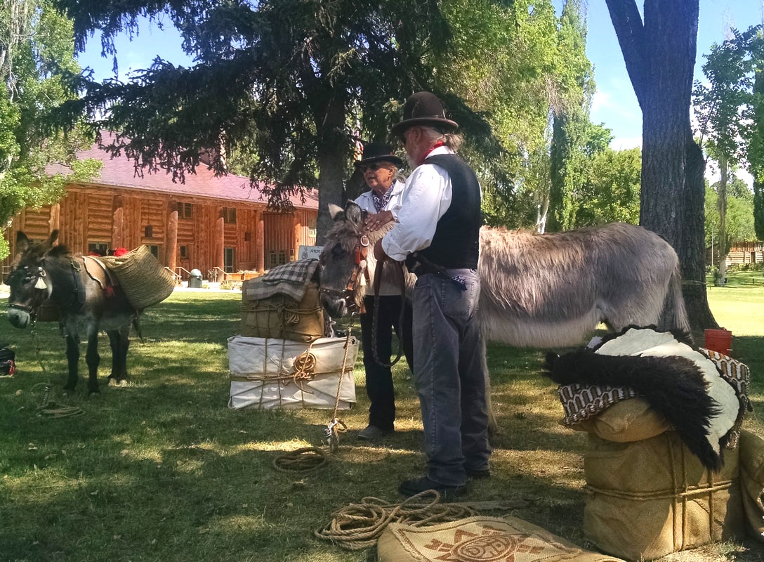 Burro packing class during the summer